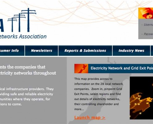 Electric Network Association Annual CEO Forum